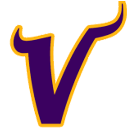 Minnesota-Viking...P Sports Logo
