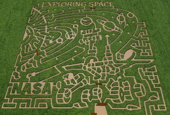 7 Incredible NASA Corn Mazes Cool Crop Circles for Science - Google Chrome_2012-10-25_09-30-26