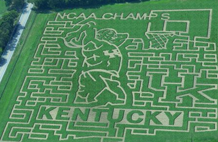 Coach Cal offers sneak peek of corn maze celebrating UK's 8th national champions_2012-10-25_09-19-09