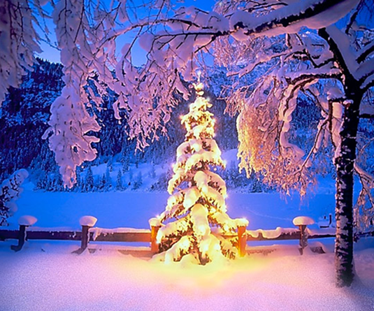 30 wonderful winter wonderland scenes captured in design - Winter theme chrome ...
