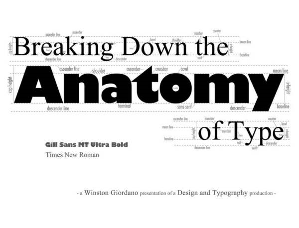 Typography Breakdown Infographic by ~dubgee on deviantART - Google Chrome_2013-09-13_10-35-09