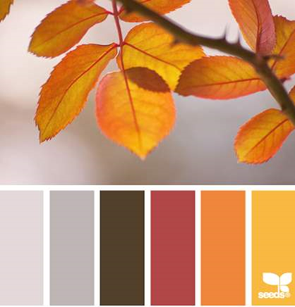 Design Seeds® for all who ❤ color autumn palette - Google Chrome_2013-10-23_13-49-48-Optimized