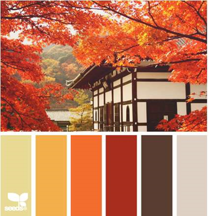 Design Seeds® for all who ❤ color autumn view - Google Chrome_2013-10-23_13-46-30-Optimized