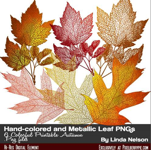 Photoshop Free Download Autumn and Thanksgiving leaves{handcolored Leaf Stamps&_2013-11-11_09-43-26-Optimized