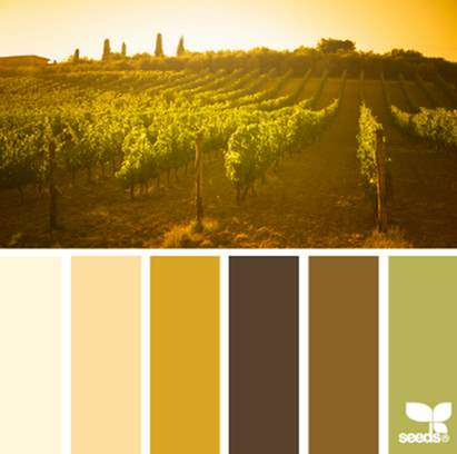 Design Seeds® for all who ❤ color vineyard hues - Google Chrome_2014-05-29_10-35-38