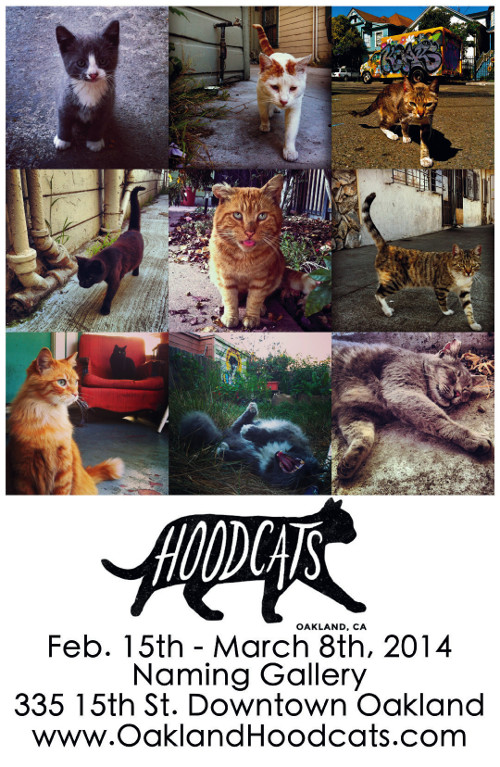 Poster for Hoodcats.