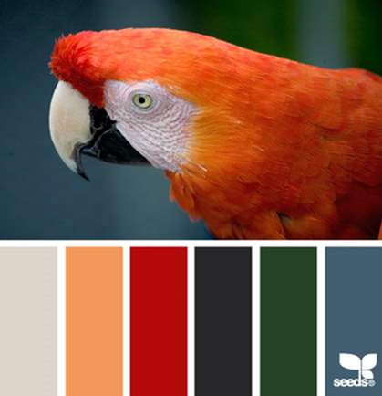 Design Seeds® for all who ❤ color feathered palette - Google Chrome_2014-06-10_15-59-50