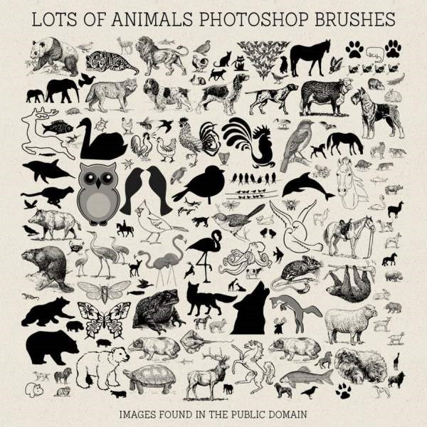 ps_brushes__lots_of_animals_by_hggraphicdesigns-d8f1su0