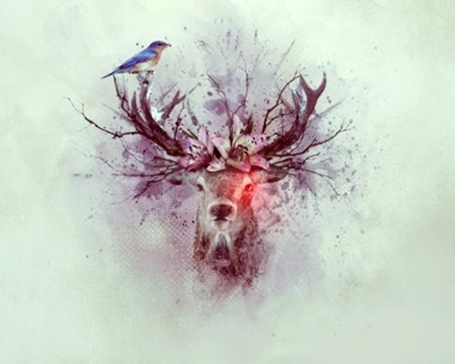 deer_watercolor-final