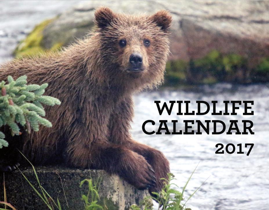 calendar marketing