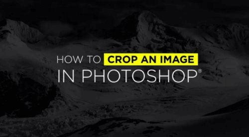 image crop tutorial