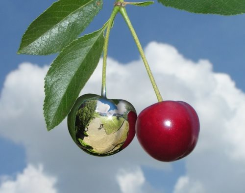 chrome plate cherries in photoshop