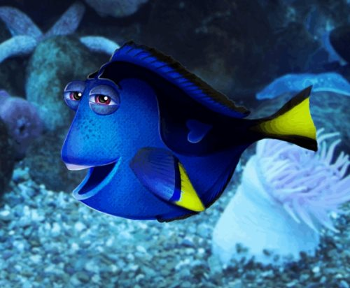 Dory photomanipulation tutorial