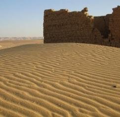 Mother Nature as Inspiration: Designs from the desert