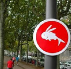 10 Unusual Street Signs