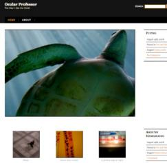 WordPress and Tumblr Themes for Designers