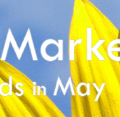 5 Ways to Market with Postcards in May