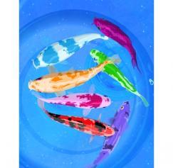 5 Fantastic Fishy Designs