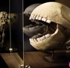 Skeleton in Your Closet? 5 Creepy Ads With Bones