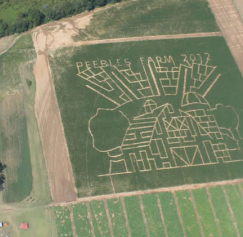 30 Amazing Cornfield Maze Designs