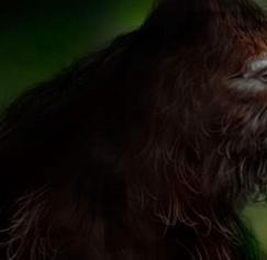 10 Awesome Bigfoot Designs
