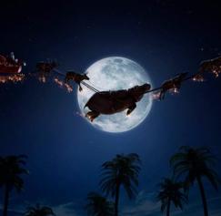 30 Wonderfully Weird Christmas Designs
