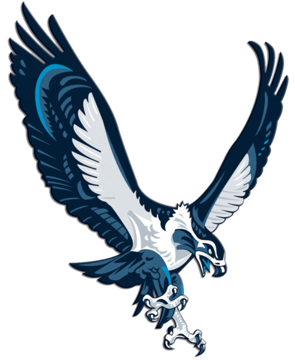33 Best Nfl Logos Of All Time