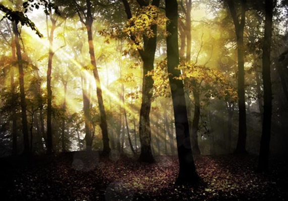 10 free tutorials for photoshopped nature scenes